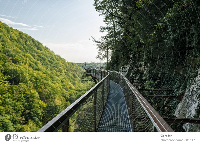 Ferien & Urlaub & Reisen Tourismus Ausflug Berge u. Gebirge Natur Landschaft Pflanze Himmel Wolken Horizont Herbst Klima Wärme Baum Blatt Park Wald Hügel Felsen
