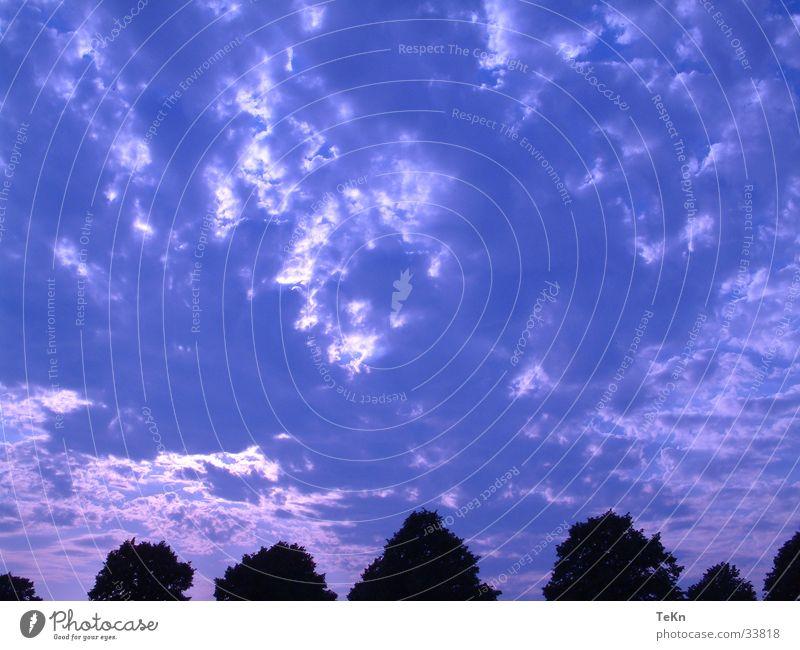 blue sky Wolken Baum Himmel blau Sonne Filter