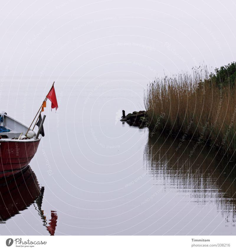 Eine gute Zeit. Himmel Natur Ferien & Urlaub & Reisen Wasser Pflanze rot ruhig schwarz Umwelt Gefühle grau Schwimmen & Baden Stein Wasserfahrzeug Zufriedenheit