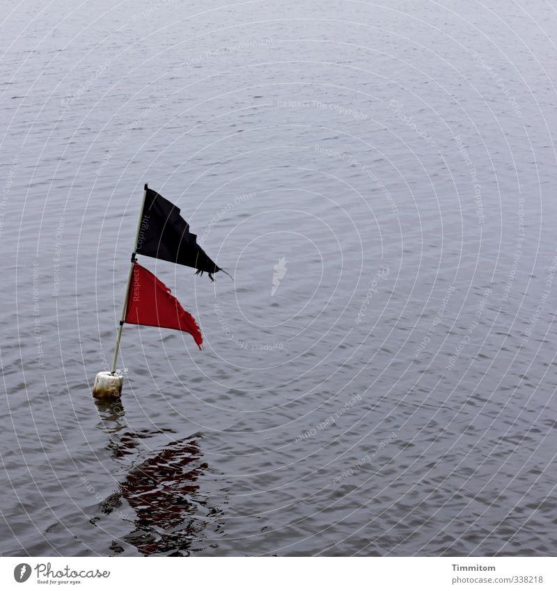 Künftige Erinnerungen. Natur Ferien & Urlaub & Reisen blau Wasser rot schwarz Umwelt Gefühle Schwimmen & Baden ästhetisch einfach Zeichen Lebensfreude Fahne