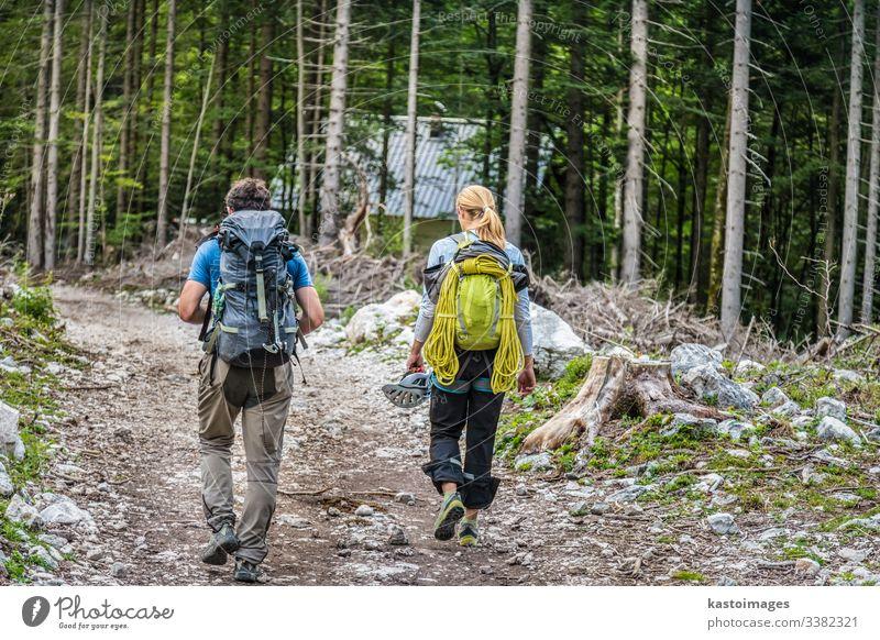 Rückansicht von zwei jungen aktiven Paaren, die den Pfad im Wald entlanglaufen. Abenteuer Wanderung wandern Natur Lifestyle Rucksack Menschen reisen Trekking