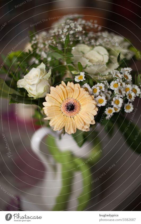 Blumenstrauß mit Gerbera, Margeriten, weißen Rosen, weißem Kohl und Schleierkraut in weißer Emaille-Vase auf Tisch margeriten Muttertag Geburtstag Valentinstag
