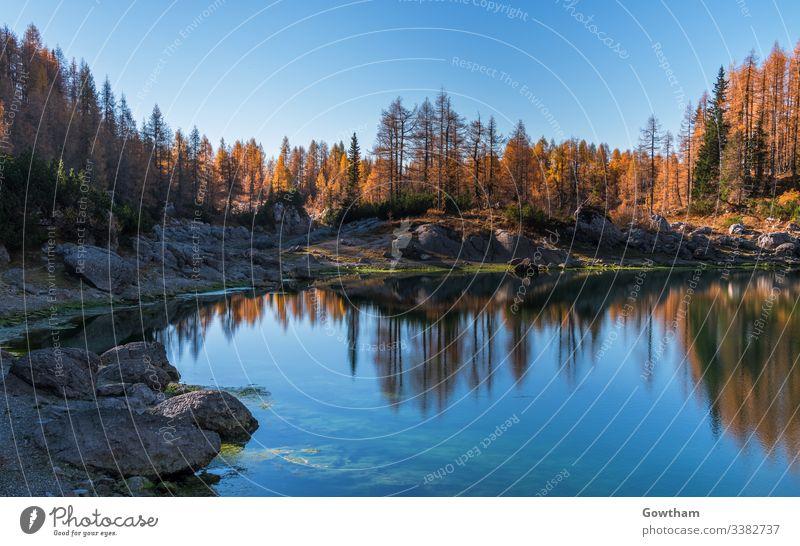 Herbst im Tal der sieben Seen in den Julischen Alpen alpin Hintergrund Schönheit blau bohinj zentral übersichtlich Ökologie Europa Wald gorenjska Gras grün HDR