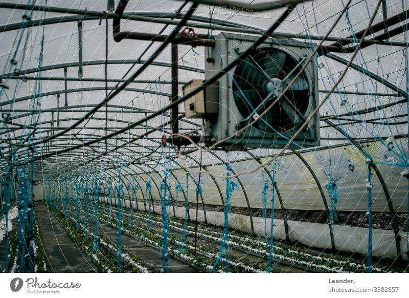 Gewächshaus, Lüfter, industrieanlage blau Landwirtschaft Ernährung Landschaftsformen grün Arbeitsplatz