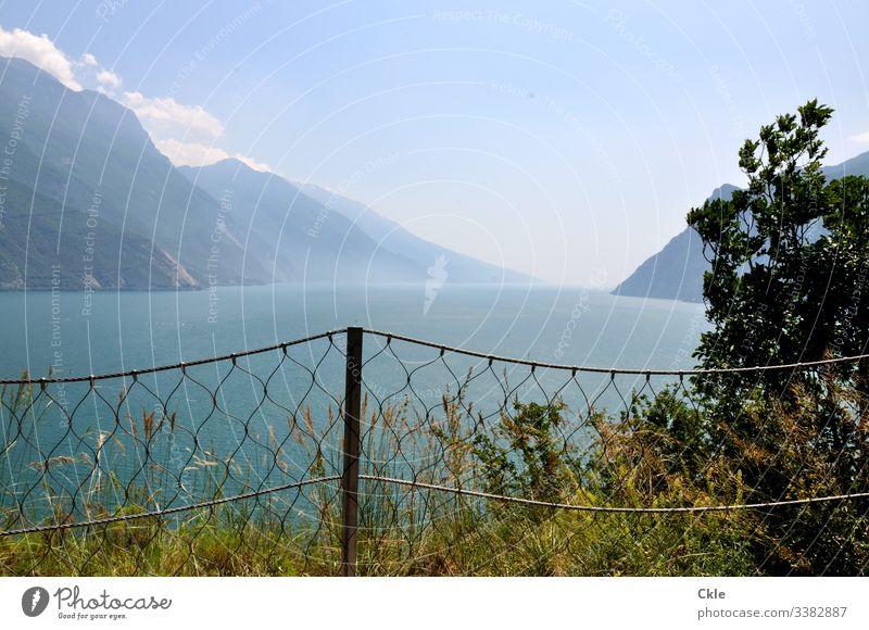 Gardasee Riva del Garda Monte Brione See Berge u. Gebirge Himmel Zaun Baum Sträucher Wolken Aussicht Weite Gipfel Horizont Sommer Wanderung Italien Norditalien