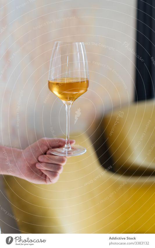 Person, die ein Glas mit einem Getränk im Licht hält trinken Alkohol frisch Party Schnaps kalt durchsichtig Weinglas liquide sich[Akk] entspannen Zuprosten