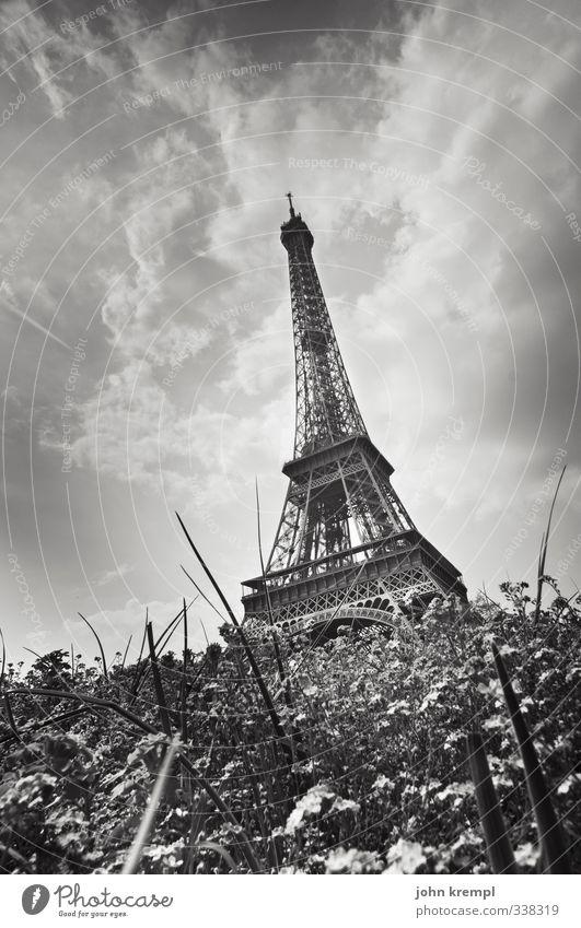 Der schiefe Turm von Parisa Park Wiese Frankreich Hauptstadt Stadtzentrum Bauwerk Gebäude Architektur Sehenswürdigkeit Wahrzeichen Tour d'Eiffel Blühend