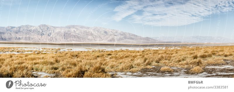 salt creek im Death Valley USA Salt Creek Sand trockenes Land endemisch Gelände Weg Geologie Umwelt Ödland Pflanzen Gras tot Bach Promenade Berg Tod Hitze