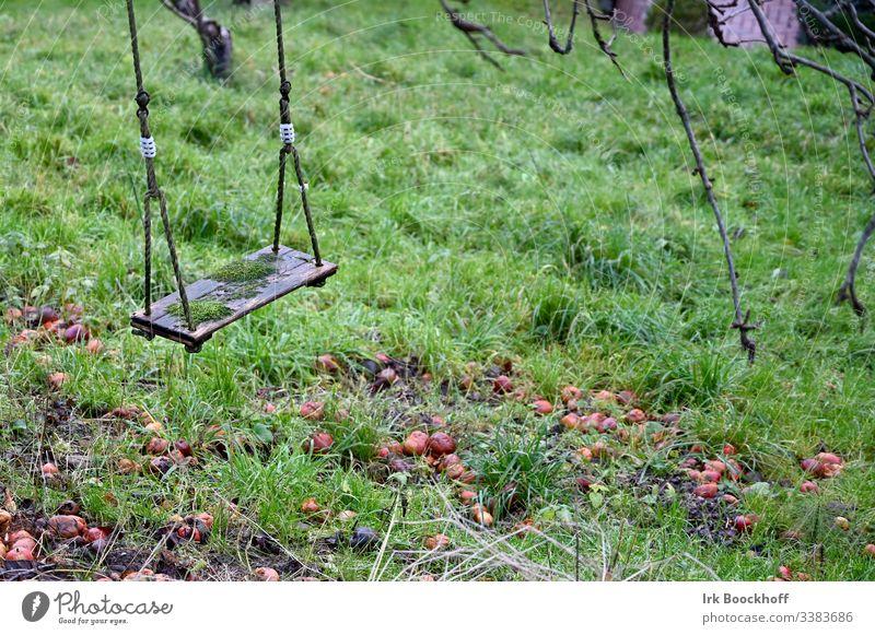 Schaukel im Herbst schaukel Spielplatz Freude Außenaufnahme schaukeln Kindheit Garten Menschenleer Freizeit & Hobby Farbfoto Moos Äpfel trist Tristess