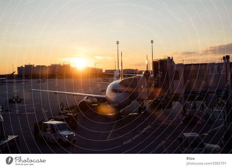 Ein Flugzeug bei der Abfertigung am Flughafen im Sonnenuntergang flugzeug fliegen flugverkehr flughafen reisen sonnenaufgang sonnenuntergang abfertigung fernweh