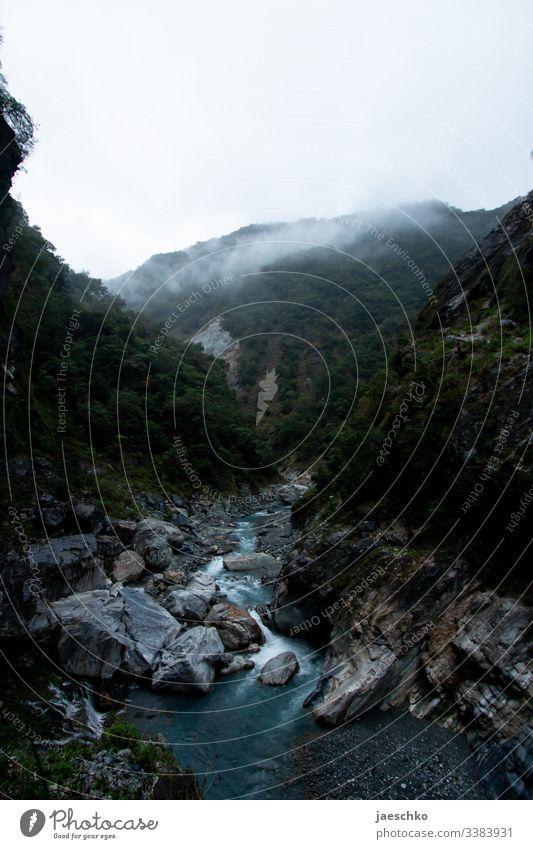 Schlucht mit wildem Fluss in einem Nationalpark II Felsen Steine Natur Berge u. Gebirge fließen Bach grün Landschaft Naturschutzgebiet Wald Regenwald Taiwan