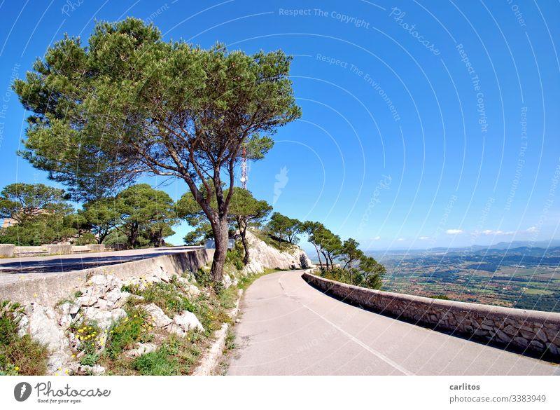 Puig de Sant Salvador Spanien Mallorca Berg Straße Natursteinmauer Pinien Aleppo-Kiefer Aussicht Ferne Ferien & Urlaub & Reisen Himmel Landschaft Sommer