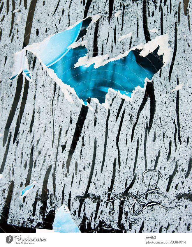 In Fetzen Reste Papier Plakat abgerissn Papier Klebstoff Glasscheibe trashig Außenaufnahme kaputt Menschenleer Wand Strukturen & Formen Werbung alt Plakatwand