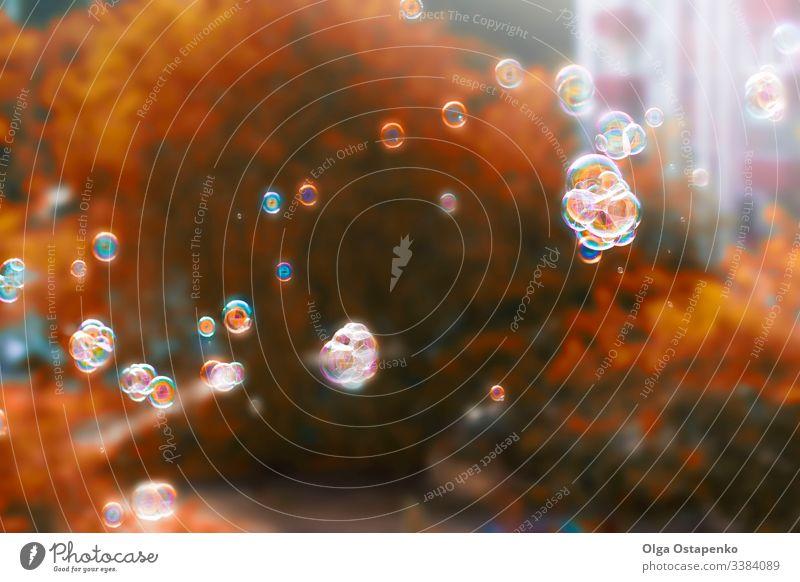 Herbstlicher Hintergrund mit Seifenblasen. Leuchtend gelb-orangefarbenes Herbstlaub. Mehrfarbige Regenbogen-Seifenblasen Design abstrakt Baum Rahmen Muster