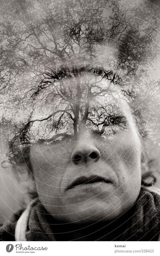 Helgiland | Mind-Mapping Mensch feminin Frau Erwachsene Leben Kopf Gesicht Auge Nase Mund Lippen Kinn 1 30-45 Jahre Umwelt Natur Baum Ast Zweig Blick Wachstum