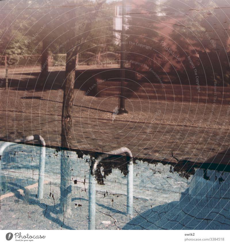 Falkenberg/E. Straße Spiegelung Schaufenster Baum Metall Schutz Sicherheit Abstand Schaufenster alt marode trist trashig abgenutzt Risse Spuren Zahn der Zeit