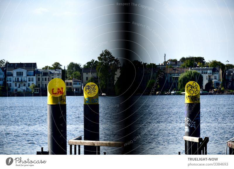 Anlegestelle für Wassertaxi am Tiefen See (Havel) in Babelsberg mit Holzgeländer, runden Stahlpfeilern, gelb und grau, Graffitti verziert mit Blick auf Potsdamer Ufer, Marina und Bäumen