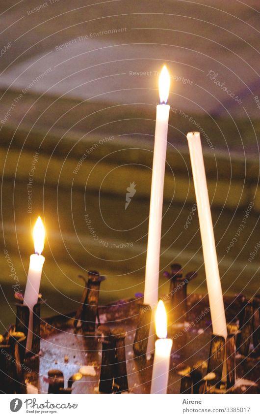 nichts unversucht lassen | corona thoughts Kerzenschein Kerzenständer Kerzenlicht Kerzenaltar Kerzenflamme Feuer Religion & Glaube Innenaufnahme Licht leuchten