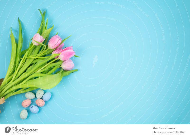 Blumenstrauß aus Tulpen und Ostereiern auf blauem Hintergrund. Konzept von Ostern. Raum kopieren. Eier Textfreiraum Postkarte Blauer Hintergrund Feier Einladung