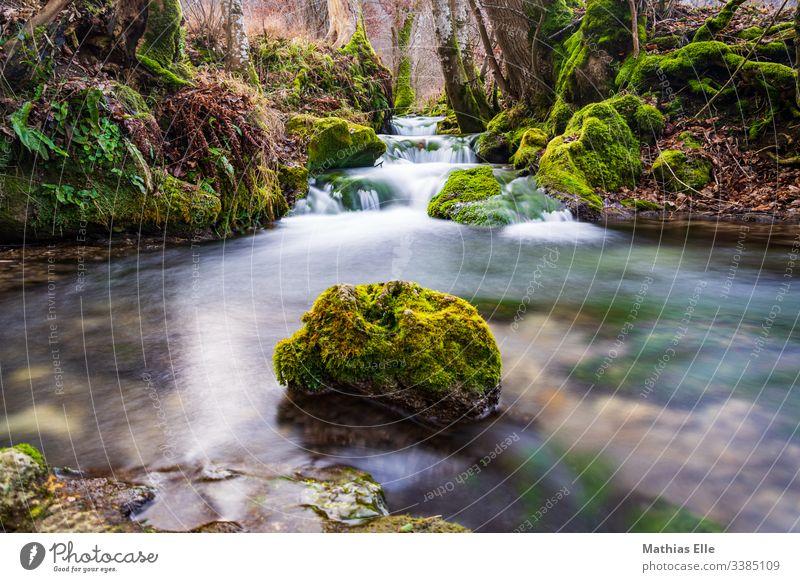 Wasserlauf mit Stein Brücke Wasserfall bach langzeitbelichtung Langzeitbelichtung Außenaufnahme Fluss Natur Farbfoto fließen grün Umwelt nass Felsen Tag Bach