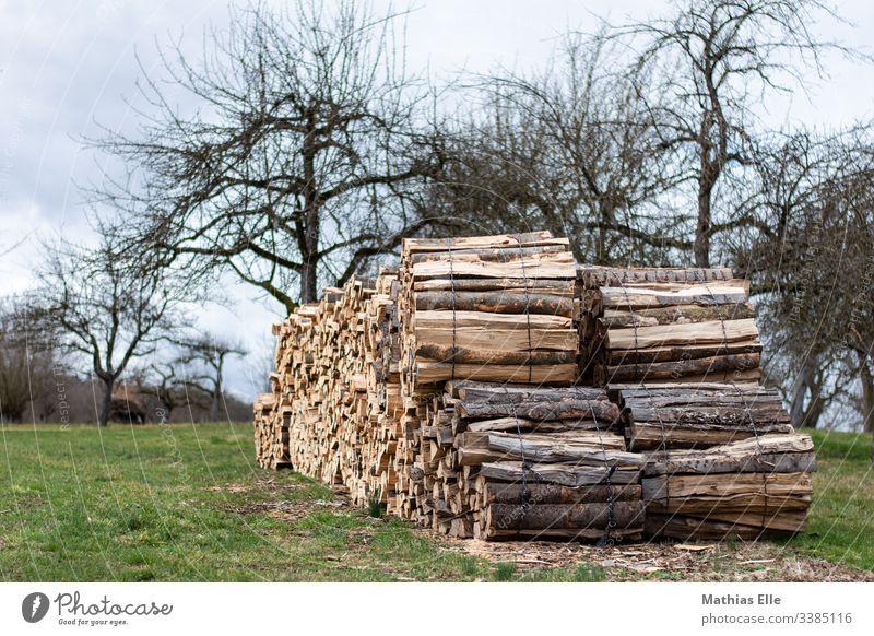 Holzstapel Brennholz Farbfoto Menschenleer Stapel Tag Natur braun Strukturen & Formen Nahaufnahme Baum Baumstamm Forstwirtschaft Detailaufnahme Gedeckte Farben