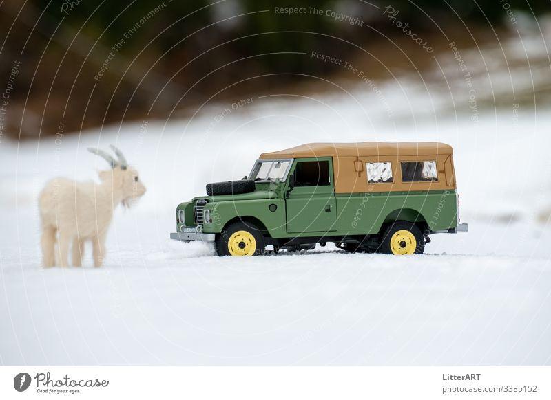 LAND ROVER SERIES IM NEUSCHNEE VON ZIEGE BESTAUNT ziege bergziege neuschnee winter winterlandschaft land rover land rover series oldtimer defender keswick green