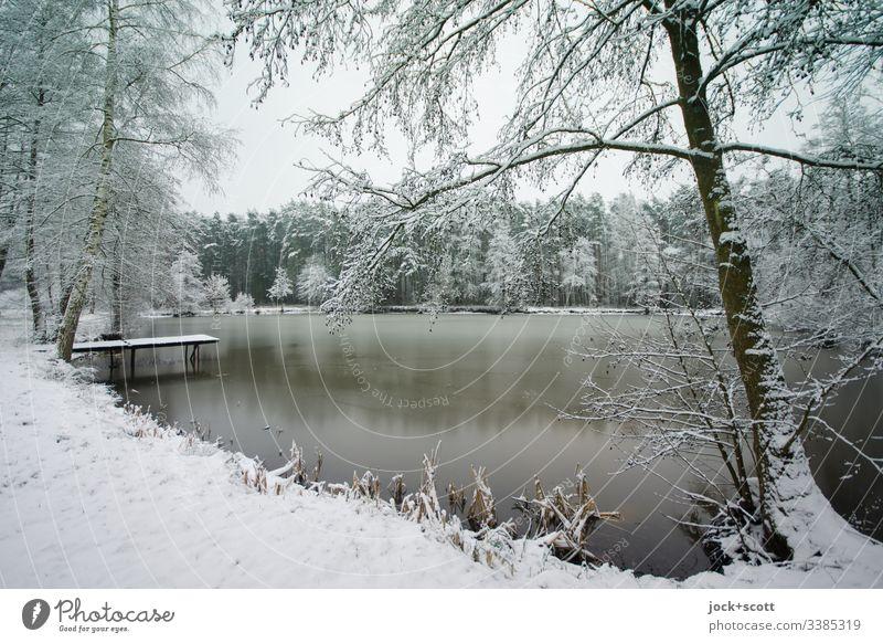 Winterliche Natur mit See  nicht von diesem Jahr Winterurlaub Schnee Frost Seeufer authentisch kalt Romantik Idylle Reflexion & Spiegelung Silhouette Landschaft