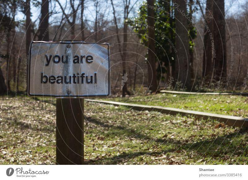 Sie sind schön und ermutigend, freundliche Worte auf einem Naturlehrpfad zu finden Fußweg Wege & Pfade Freiheit Wald Erholung Frieden Windstille Sommer Baum