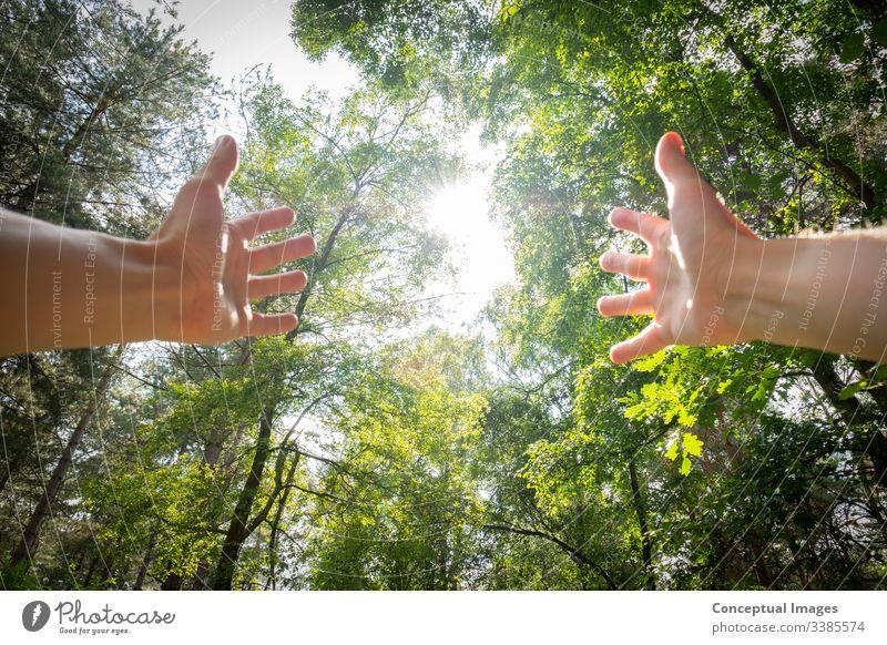 Persönliche Perspektive eines Mannes mit ausgestreckten Armen in einem Wald aktiv Erwachsener Abenteuer Waffen Atem Atmung sorgenfrei Kaukasier Konzept Tag