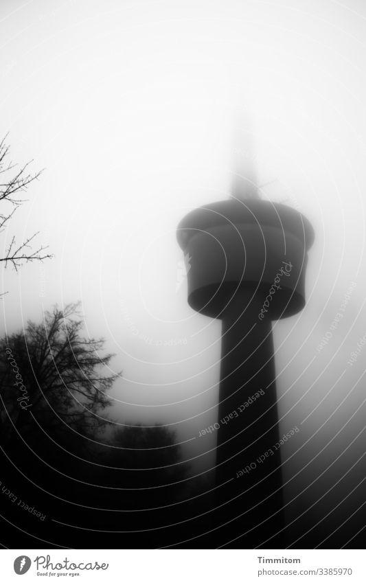 Fernsehturm im Winternebel Sendeturm Nebel Schwarzweißfoto dunkel düster Bäume Architektur kalt Außenaufnahme Menschenleer Baum Wald Natur Einsamkeit