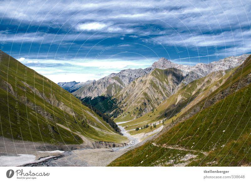 Val Trupchun Sommer Grünpflanze Wildpflanze Alpen Berge u. Gebirge schweizer alpen Nationalpark Schweizer Nationalpark Gipfel blau wandern