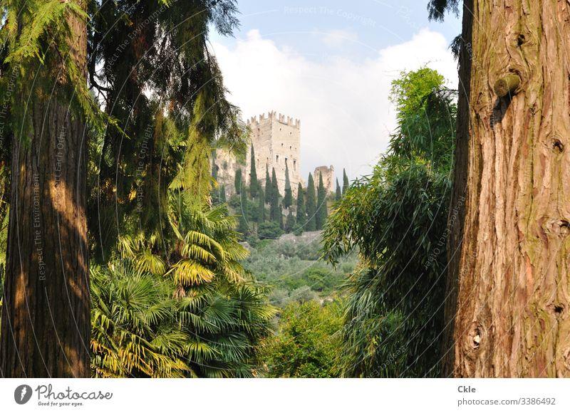 Burg Arco nahe des Gardasees Burgruine Arco Trentino Norditalien Bäume Park Zypressen Italien Landschaft Berge u. Gebirge Wolken Kurort Himmel Außenaufnahme