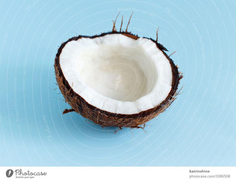 Kokosnussstück auf hellblauem Hintergrund Keton Frucht hell-blau abschließen Pastell Bestandteil Nut Ernährung Veganer Vegetarier Veggie weiß braun süß