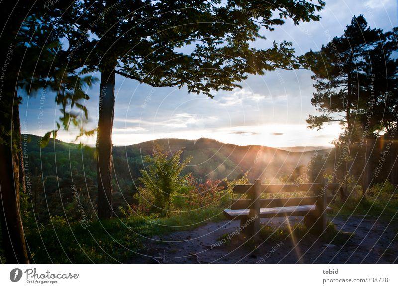 Ausblick Natur Ferien & Urlaub & Reisen Landschaft Wald Ferne Berge u. Gebirge Freiheit Idylle Schönes Wetter Ausflug Abenteuer Pause Aussicht Hügel
