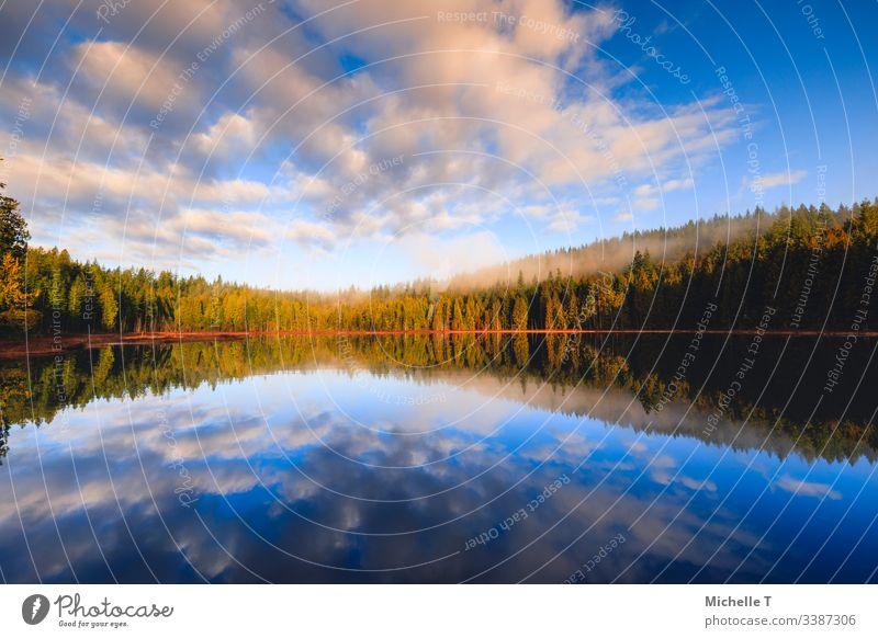 Erstaunliche Reflexion auf dem See am frühen Wintermorgen Hintergrund schön Schönheit blau British Columbia Wolken kalt farbenfroh Umwelt Februar Wald