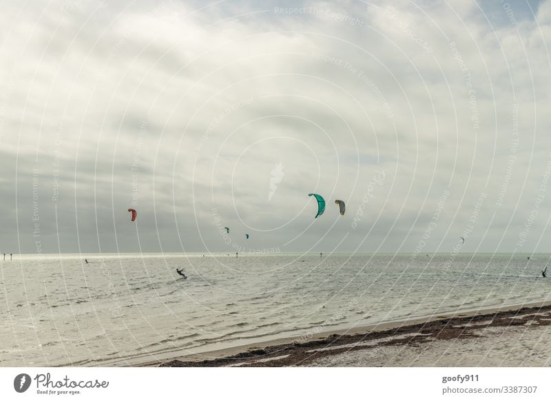 Einfach ziehen lassen Wind Surfen Surfer Meer Ozean Wasser Außenaufnahme Farbfoto Wellen Sport Strand Wassersport Küste Freizeit & Hobby Freude Sand