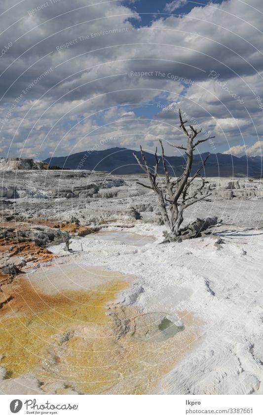 yellowstone nationalpark die natur Wyoming Wunder Feiertag Szene heiß Ausflugsziel Ruhm Landschaft treu Berge u. Gebirge amerika Ansicht reisen Wasser Natur