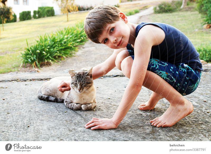 lieblingsmensch | weil er tiere so liebt Tierporträt Porträt Sonnenlicht Licht Tag Außenaufnahme Farbfoto Vertrauen begegnen genießen Freundschaft