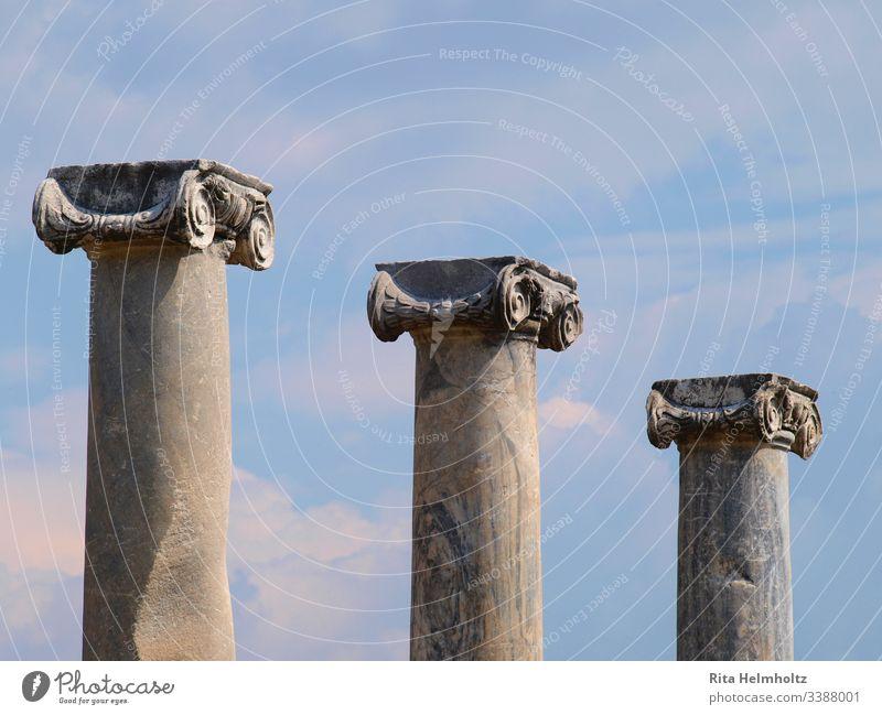 Säulen mit Ionischen Kapitellen in Perge, Türkei Ruinen ionische Kapitelle Tag Fereien Urlaub Reisen Außenaufnahme Tourismus Studienreisen Architektur