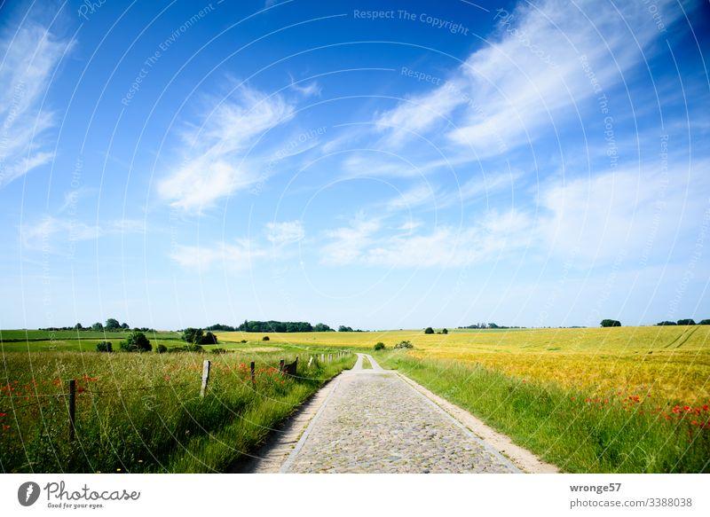 """Weg an der Vitter Kapelle (Insel Rügen) Wege & Pfade Feldweg"""" Natur Landschaft Himmel Außenaufnahme Farbfoto Wolken Menschenleer Tag Schönes Wetter"""
