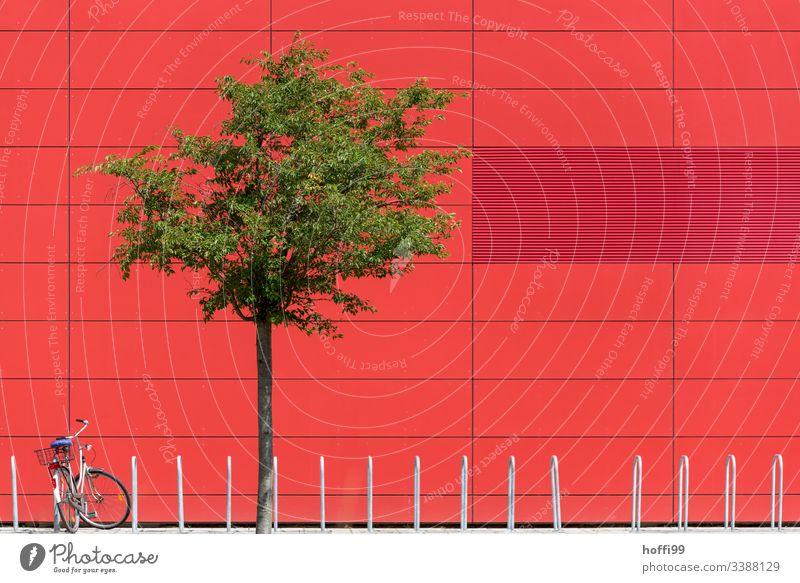 rote Aussenfassade mit grünem Baum und Fahrrad rote fassade fahrad Reinheit eckig Experiment einzigartig Sauberkeit steril Linie Muster Stil Wand urbane Formen