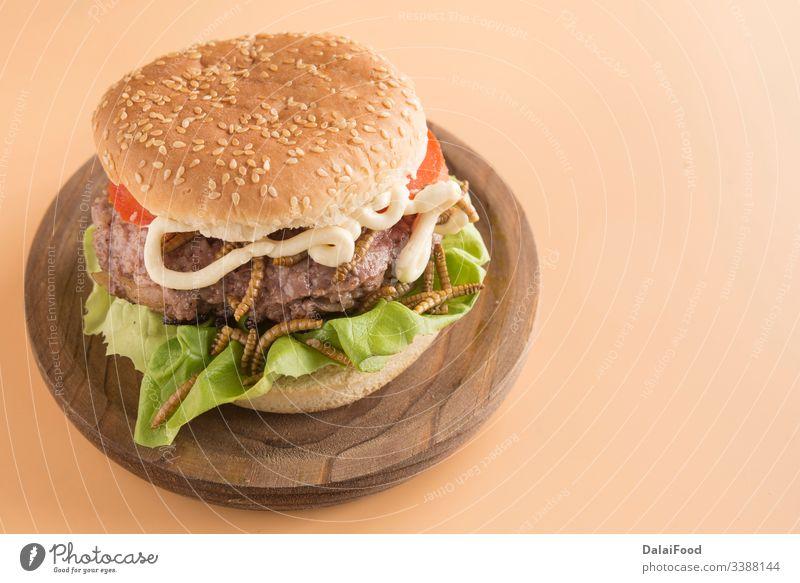 Burger aus endemischen Würmern mit Tomate und Salat Brot brauner Hintergrund essbar gebraten Insekt Larve Fleisch Protein Tomaten Holzplatte Wurm