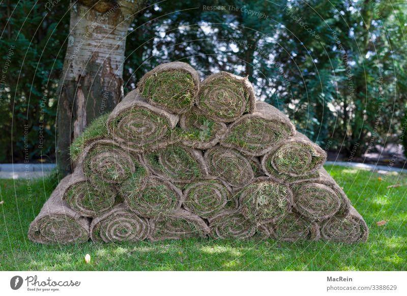 Rollrasen rollrasen fertigrasen rasenrolle gartenbau gartengestaltung rasenfläche Außenaufnahme anlegen erde Garten Gras Grasnabe Grün landschaftsbau