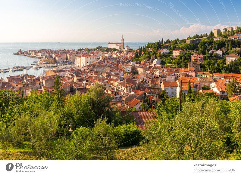 Panoramablick auf die Altstadt von Piran, Slowenien, Europa. Hintergrund des Sommerurlaubstourismus-Konzepts. MEER adriatisch Landschaft alt Tourismus Stadt