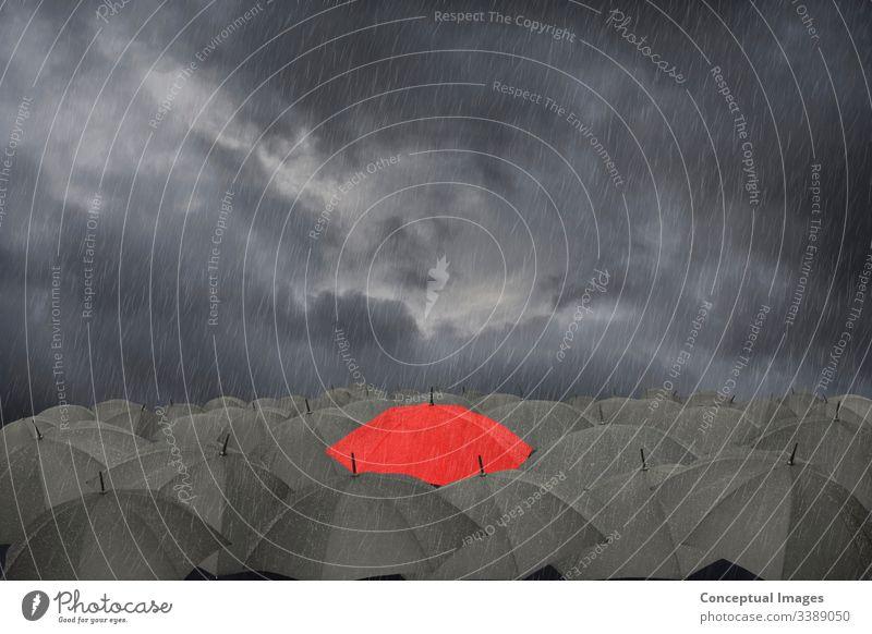 Ein roter Regenschirm, umgeben von einer Sammlung schwarzer Schirme im Regen Missgeschick Business Klima farbenfroh Konzept kreativ Kreativität Menge anders