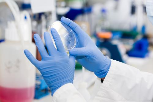Arbeit an einem Test Analyse Pflege prüfen Chemikalie Chemiker Chemie Klinik klinisch Corona-Virus Coronavirus Gefahr Fundstück Krankheit Desinfektion Seuche