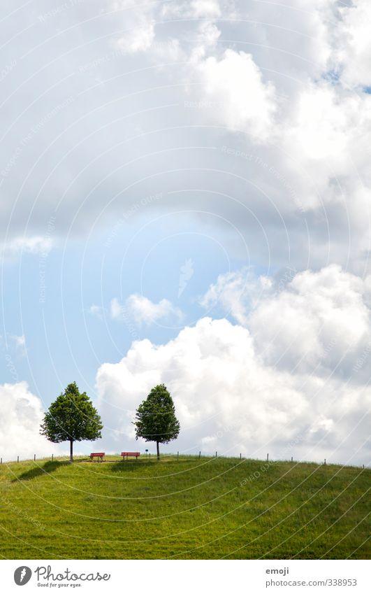 Pärchenfoto Umwelt Natur Landschaft Himmel Wolken Schönes Wetter Baum Wiese Feld natürlich grün Symmetrie Hügel paarweise 2 Farbfoto Außenaufnahme Menschenleer