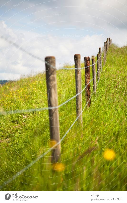 Gewitter Natur grün Sommer Umwelt Wiese natürlich Schönes Wetter Zaun Grünpflanze Zaunpfahl