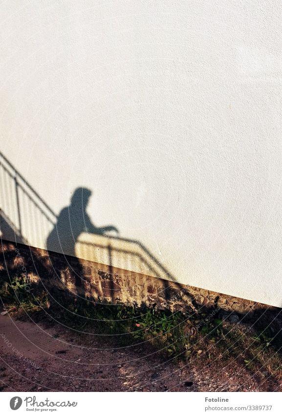 Schatten einer Frau auf einer Treppe mit Treppengeländer an einer Hauswand Licht & Schatten Architektur Gebäude Wand Mauer Außenaufnahme Tag Farbfoto Bauwerk
