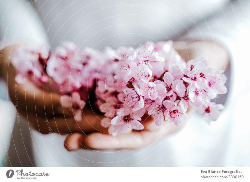 Unkenntliche Frau, die im Haus einen Strauß Mandelbaumblüten hält. rosa Blüte. Frühlingskonzept Hände Beteiligung unkenntlich Blumen Überstrahlung